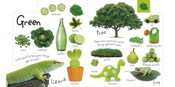 Interior page from My First Colors shows a large variety of green things including a lizard, tree, cucumbers, and a green watering can.