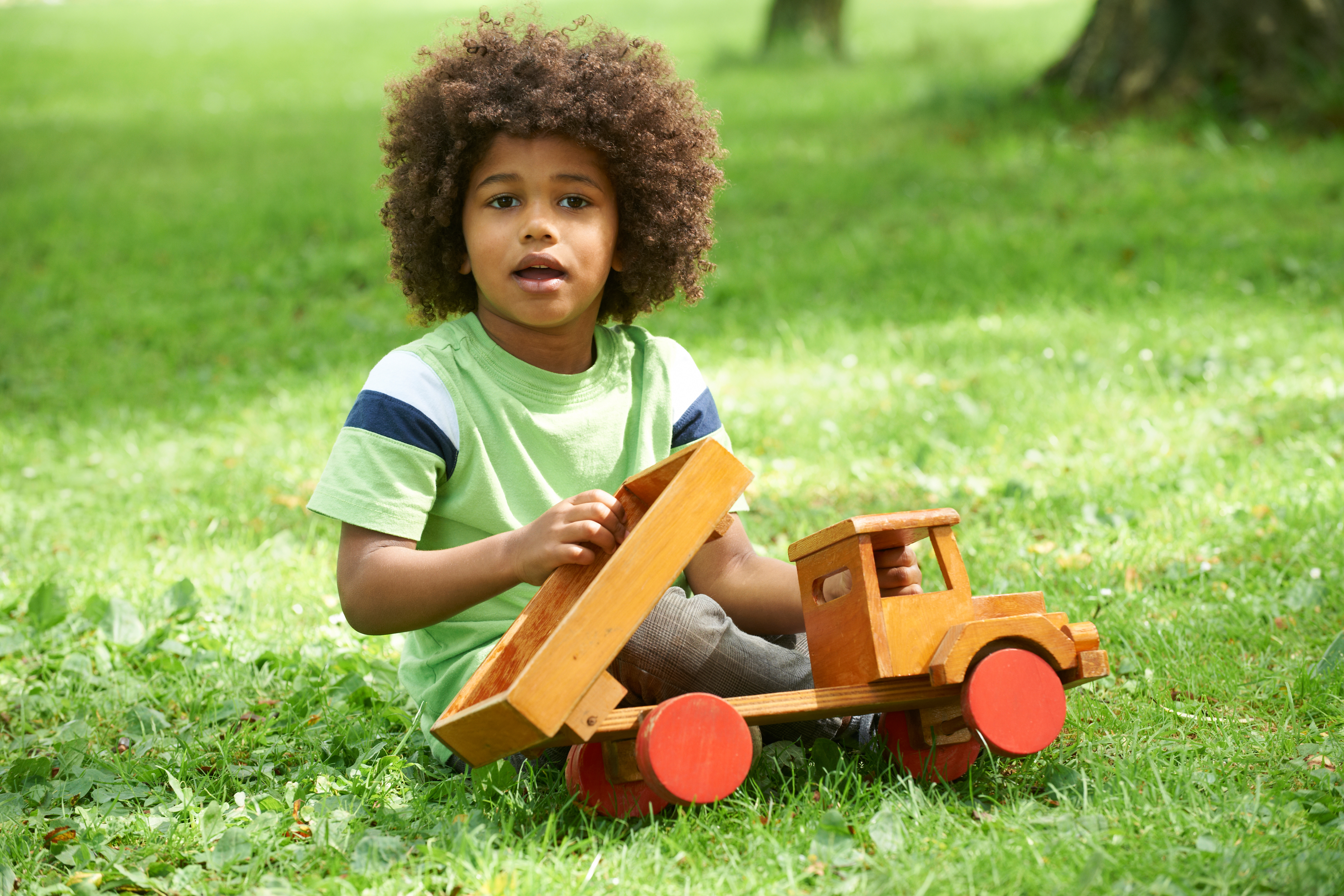 Cautionary Tale Of 4 Year Old Autistic >> 20 Books For Autistic Kids Who Really Love Trucks